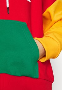 Karl Kani - SIGNATURE BLOCK HOODIE - Sweatshirt - multicolor - 5