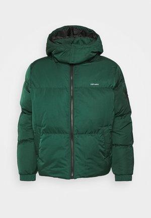NATRAVISB - Winter jacket - green