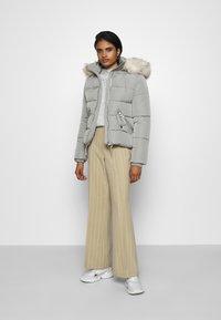 Topshop - FREIDA - Winter jacket - grey - 1