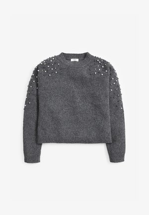 PEARL EMBELLISHED SPARKLE  - Trui - grey