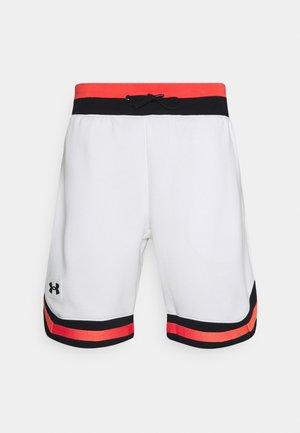 RIVAL ALMA MATER  - Sports shorts - onyx white