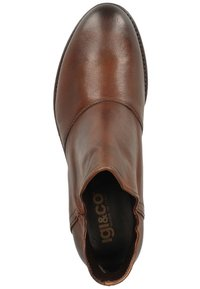 IGI&CO - Ankle boots - cuoio - 1
