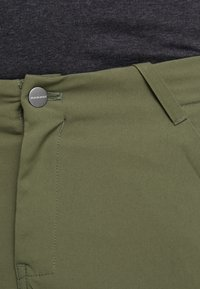 Mammut - ZINAL PANTS MEN - Pantalones montañeros largos - iguana - 3
