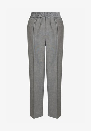 SHARKSKIN - Trousers - grey