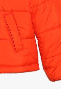 Hummel - NORTH - Winter jacket - tangerine tango - 2