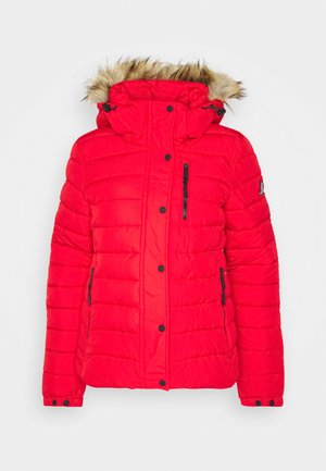 CLASSIC FUJI JACKET - Winter jacket - high risk red