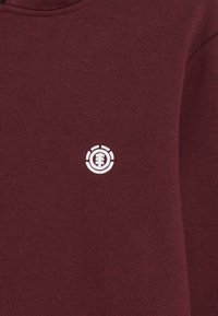 Element - CORNELL CLASSIC - Hoodie - vintage red - 2