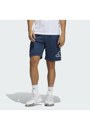 BIG LOGO - Pantaloncini sportivi - blue