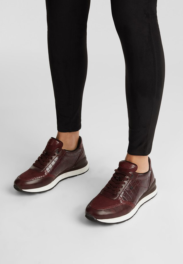Sneakers laag - bordeaux red
