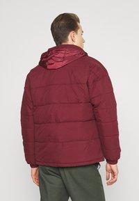 Schott - NEBRASKA - Winter jacket - bordeaux - 3