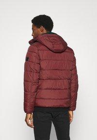 INDICODE JEANS - JUAN DIEGO - Winter jacket - red - 2