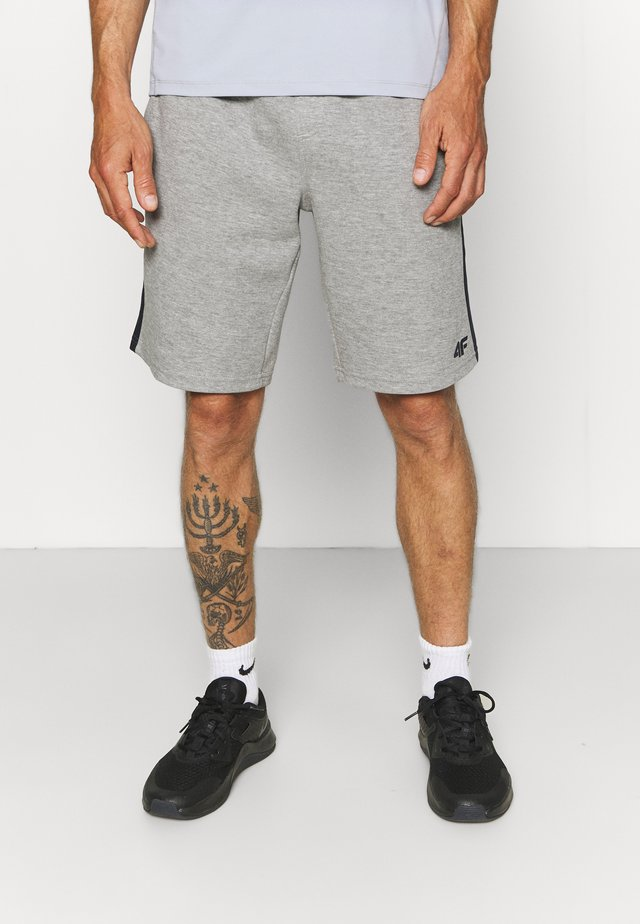 Men's sweat shorts - Träningsshorts - grey