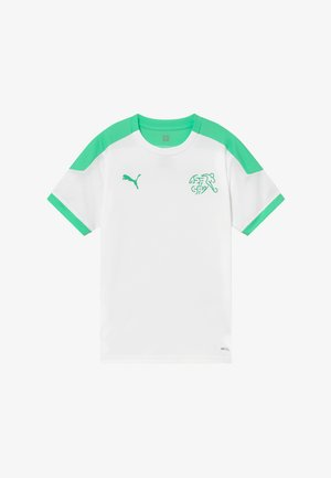 SCHWEIZ SVF TRAINING - National team wear - white/green glimmer