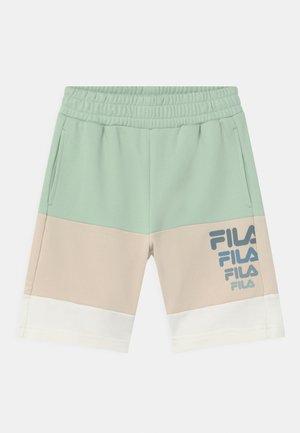 PADDY BLOCKED  - Shorts - silt green/rainy day/snow white