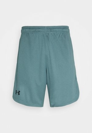 TRAINING SHORTS - Korte sportsbukser - lichen blue