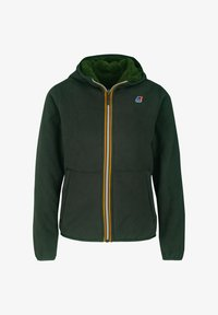 K-Way - POLAR DOUBLE - Winter jacket - green dk-green dk forest - 0