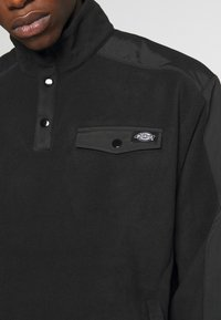 Dickies - PORT ALLEN - Fleece jacket - black - 4