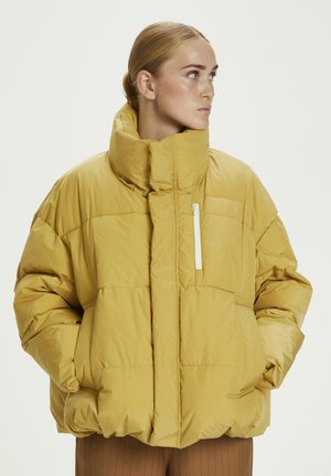 Winter jacket - pampas