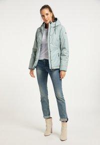 DreiMaster - Winter jacket - rauchmint melange - 1