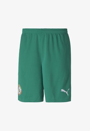 SENEGAL HOME REPLICA MEN'S FOOTBALL  - Sports shorts - pepper green-puma white