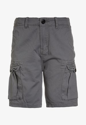 CRUCIAL BATTLE YOUTH - Pantalones cargo - quiet shade