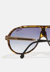 Carrera - UNISEX - Sunglasses - mottled brown - 2