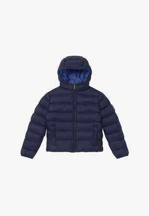 LIGHT - Winterjacke - navy