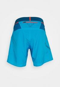 Dynafit - ALPINE PRO SHORTS - Sports shorts - frost - 1