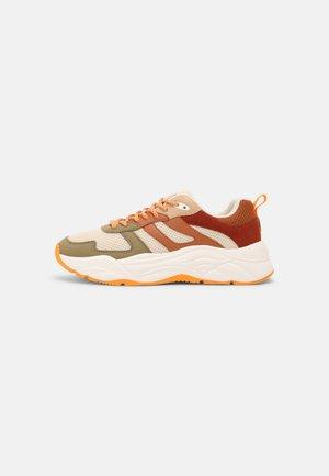 CELEST - Sneakers laag - olive/brown/multi