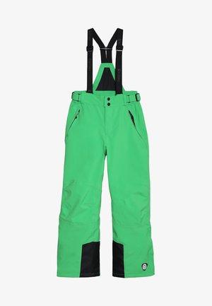 GAUROR UNISEX - Snow pants - grün