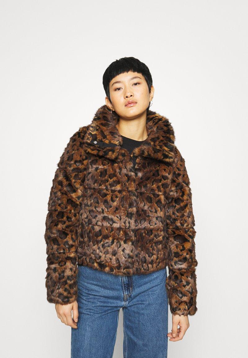 Abercrombie & Fitch - FASHION MINI PUFFER - Winter jacket - leopard