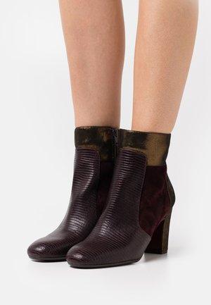WANDI - Boots à talons - grape/bronce