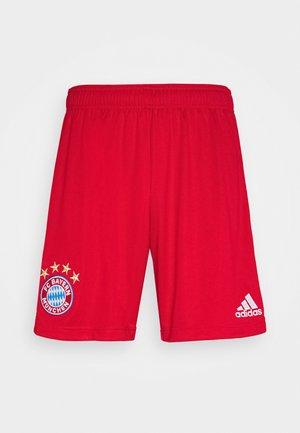 FC BAYERN MUENCHEN SPORTS FOOTBALL SHORTS - Sports shorts - red