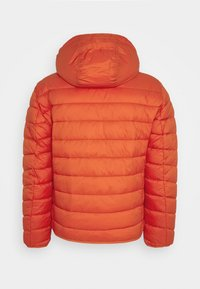 camel active - WITH HOODY - Lehká bunda - punpkin - 1