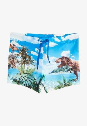 Swimming shorts - blue printed