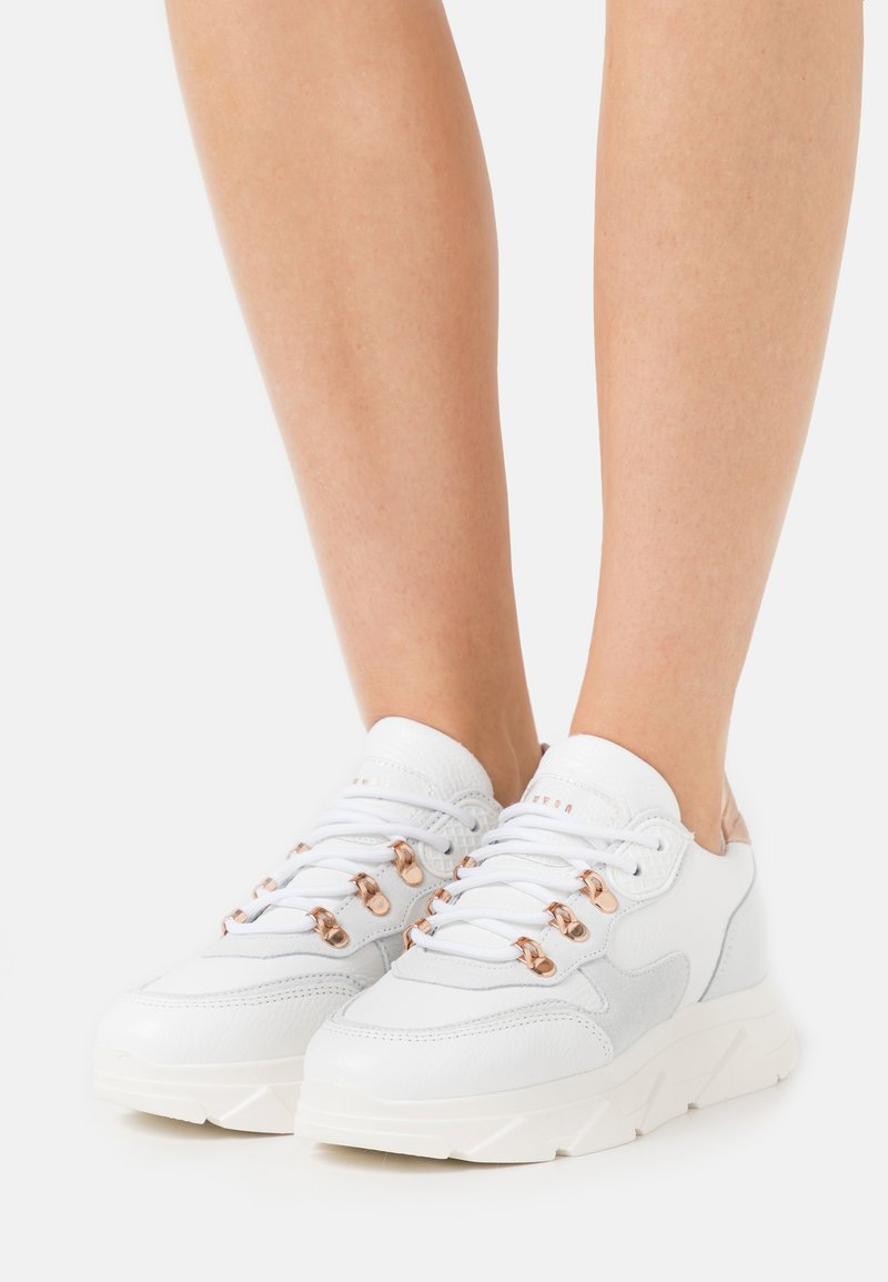 Steve Madden - PICANTE - Sneakers laag - white