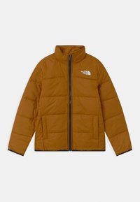 The North Face - FREEDOM TRICLIMATE 2-IN-1 - Snowboard jacket - new taupe green - 2