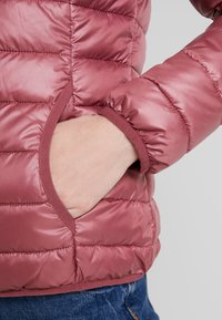 TOM TAILOR DENIM - HOODED PUFFER - Winter jacket - renaissance rose/red - 4