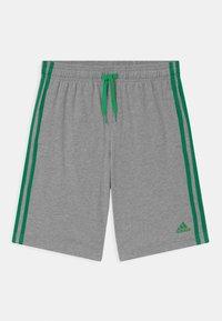 adidas Performance - Sportovní kraťasy - grey/green - 0