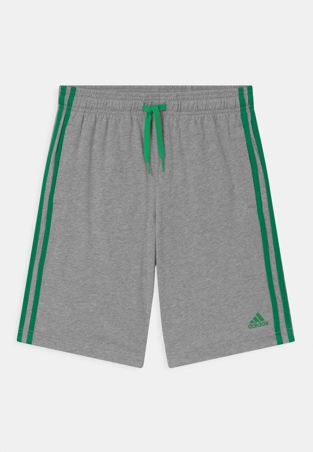Pantaloncini sportivi - grey/green