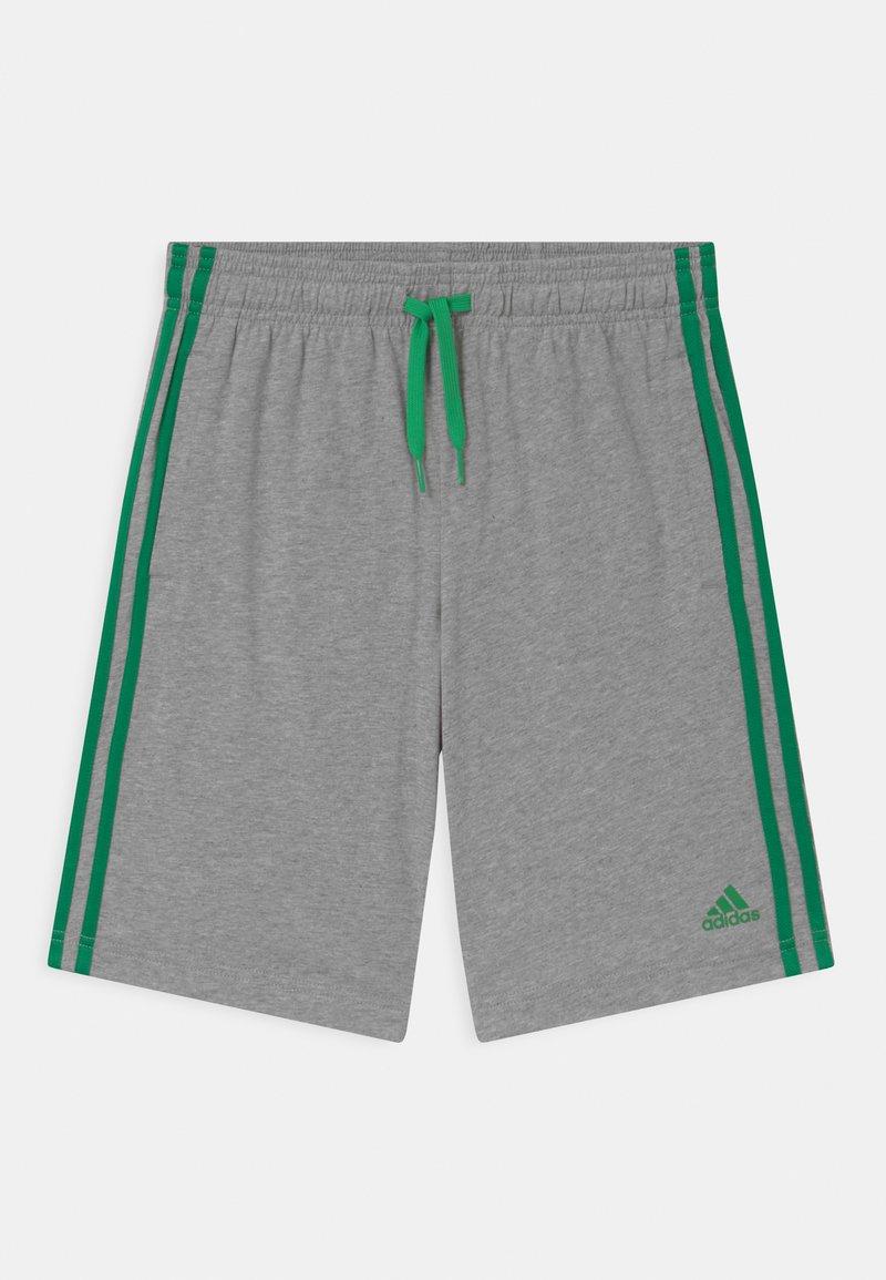 adidas Performance - Pantalón corto de deporte - grey/green