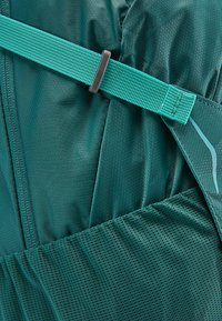 Osprey - HIKELITE - Hiking rucksack - aloe green - 8