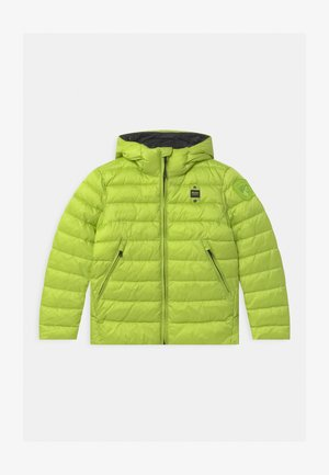 GIUBBINI CORTI IMBOTTITO OVATTA - Winter jacket - light green