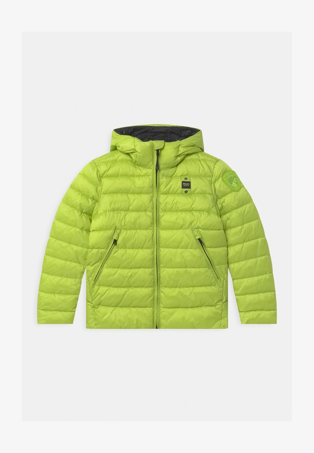GIUBBINI CORTI IMBOTTITO OVATTA - Winterjas - light green