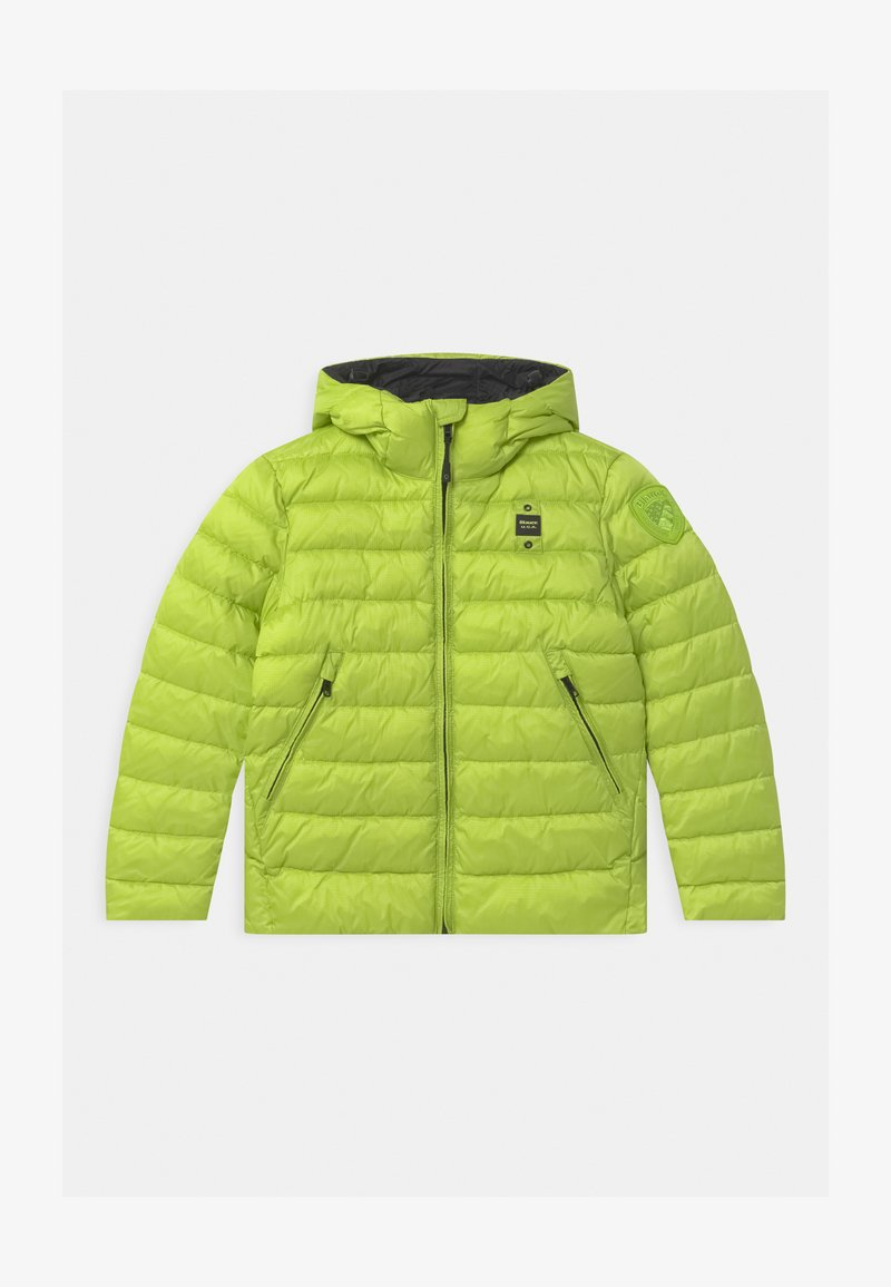 Blauer - GIUBBINI CORTI IMBOTTITO OVATTA - Winter jacket - light green