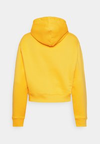 Tommy Jeans - FLAG HOODIE - Sweat à capuche - star fruit yellow - 1