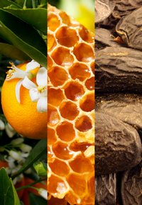 JOOP! Fragrances - HOMME MILD DEODORANT - Deodorant - - - 2