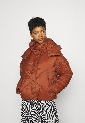 HOOD PADDED JACKET - Winter jacket - rust
