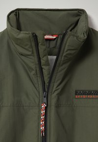Napapijri - ABBEL - Light jacket - green depths - 2