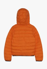 Timberland - Chaqueta de invierno - orange - 1